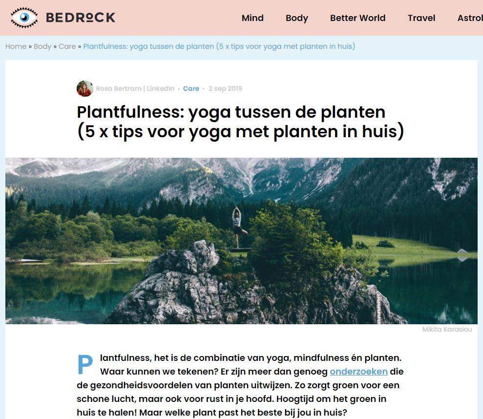 Intratuin x Blyde Benelux: Nederland vergroenen