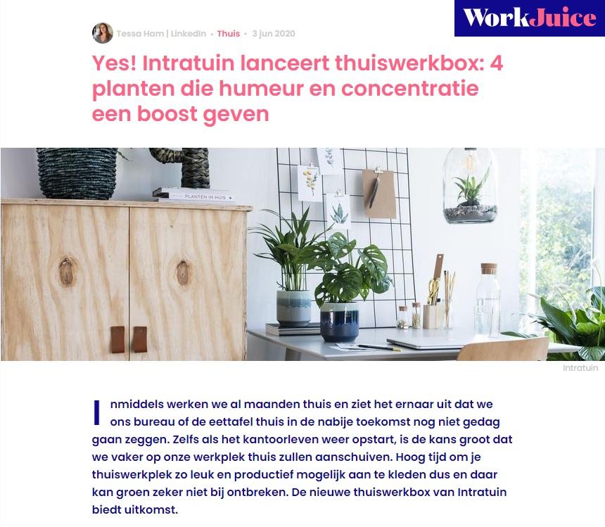 Intratuin x Blyde Benelux: Het groene werken; thuiswerkbox